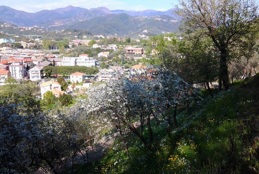 Mandrella Aprile 2015 (2)
